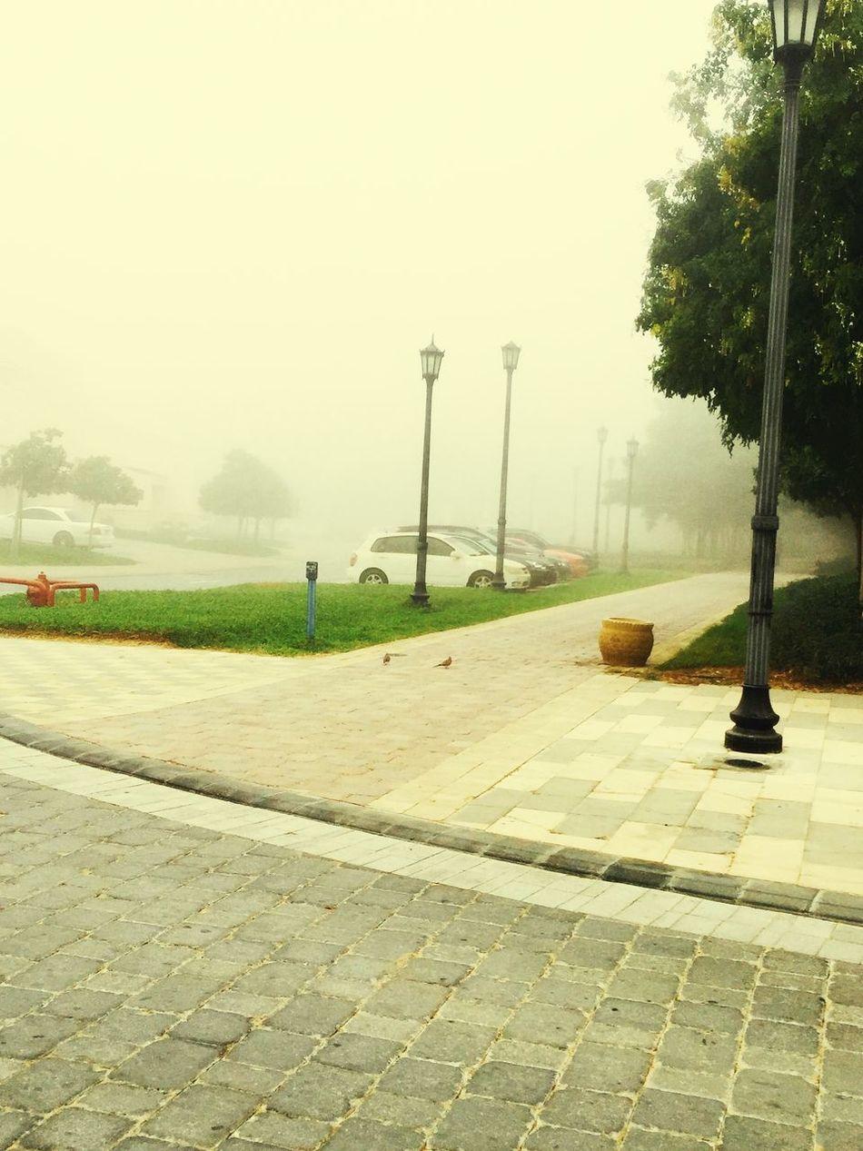 Motorcity in Fog cover