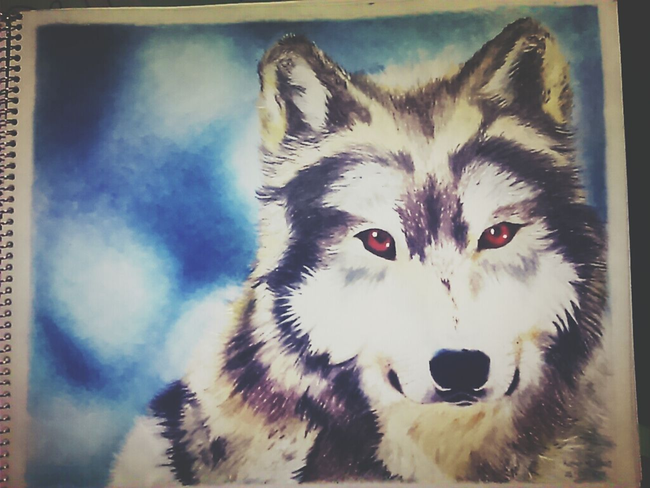 Dibujo a lapices de colores de un lobo My Draw ♥ Lobo Dibujo First Eyeem Photo