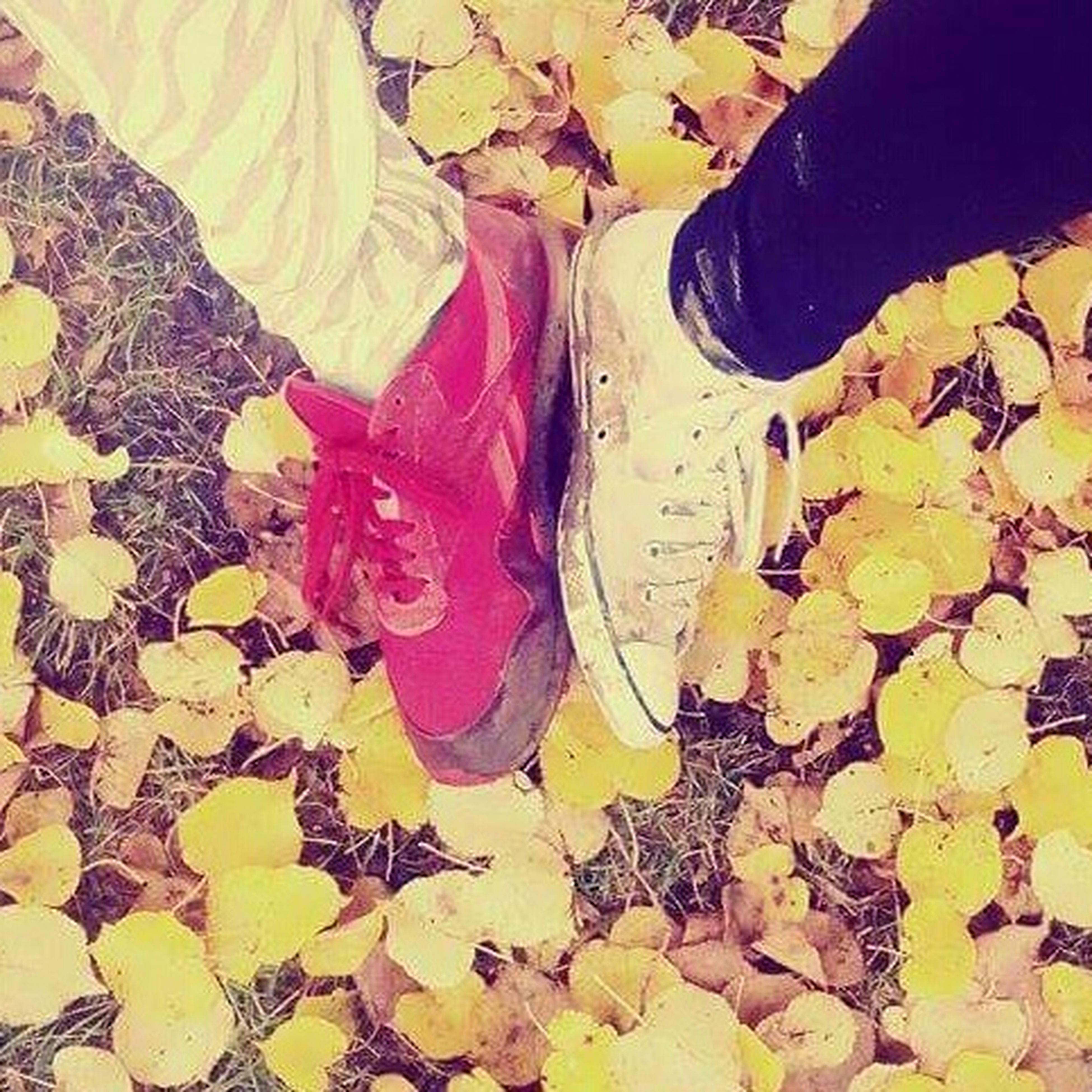 leaf, autumn, low section, change, shoe, high angle view, leaves, person, dry, season, fallen, multi colored, day, close-up, clothing, outdoors, footwear, yellow