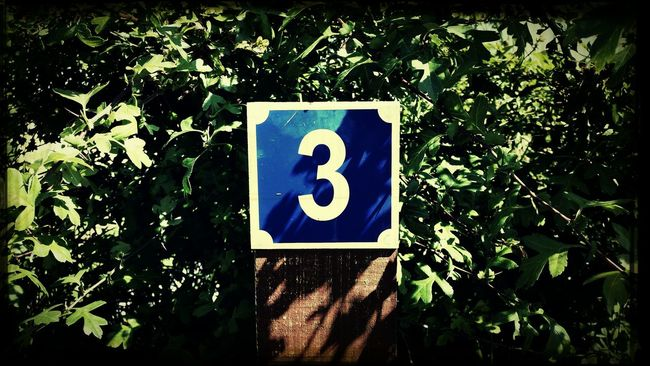 'Three Is A Magic Number' 3 To Do What I Want 3 Me