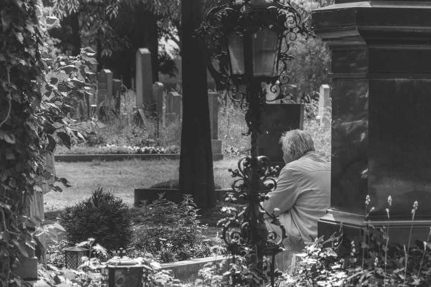 Black And White Cemetary Cemetary Shots Eeyem Black And White Left Behind Nature The Leftovers Tranquil Scene Zentralfriedhof Showcase June