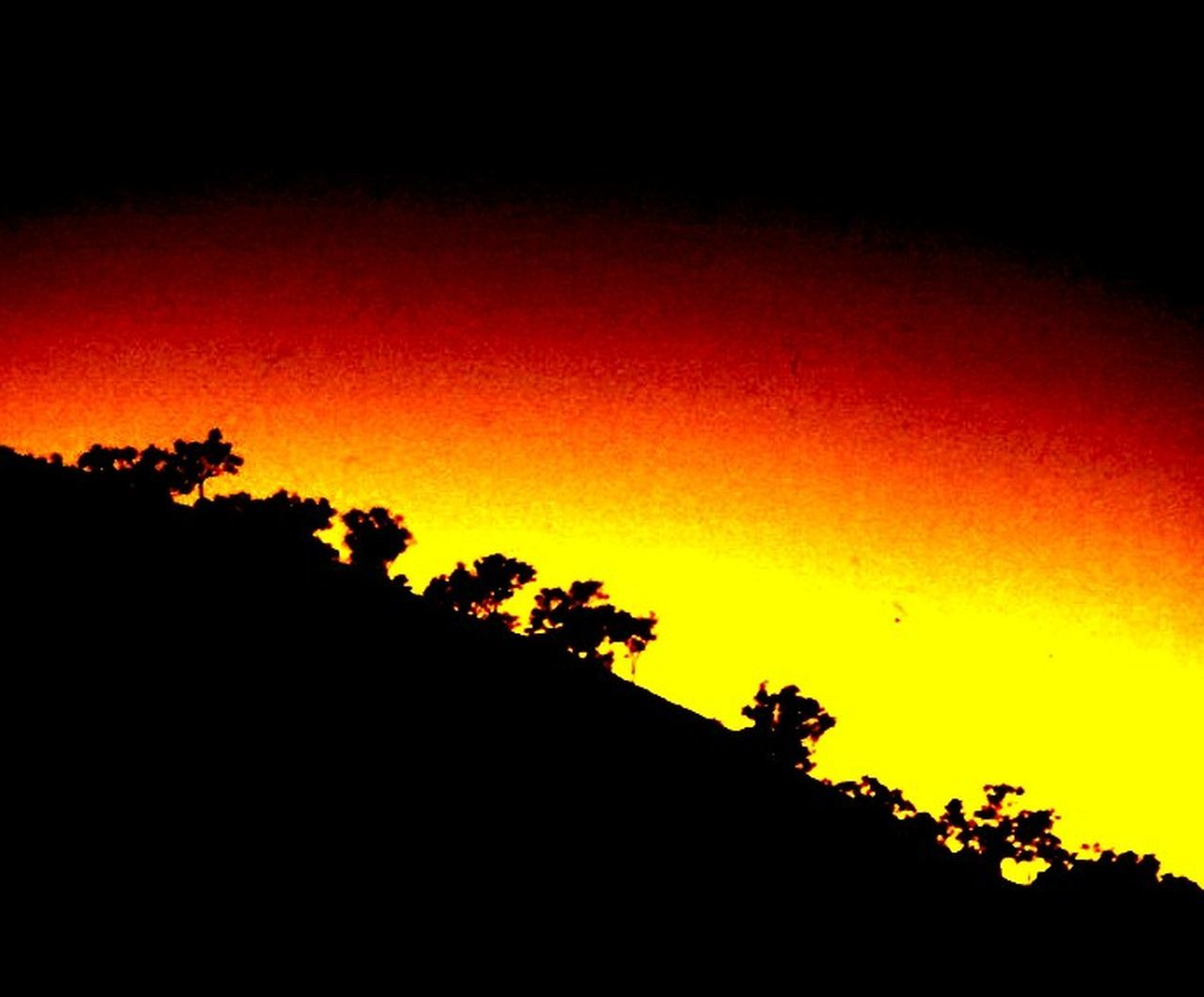 silhouette, orange color, sunset, nature, scenics, no people, tree, beauty in nature, outdoors, sky, night, landscape