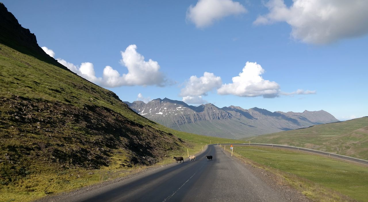 Beauty In Nature Cloud Country Road Countryside Day Diminishing Perspective Empty Road Landscape Mountain Mountain Range Nature No People Non-urban Scene On The Way Home Outdoors Remote Road Road Marking Scenics Sheeps Sky The Way Forward Tranquility