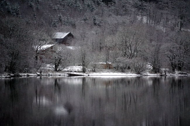 Loch Tay, Scotland Black And White Branch Calm Cold Day House Lake Loch Tay Nature No People Outdoors Rain Rainy Reflection Scenery Scenics Scotland Tranquil Scene Tranquility Water Waterfront Winter