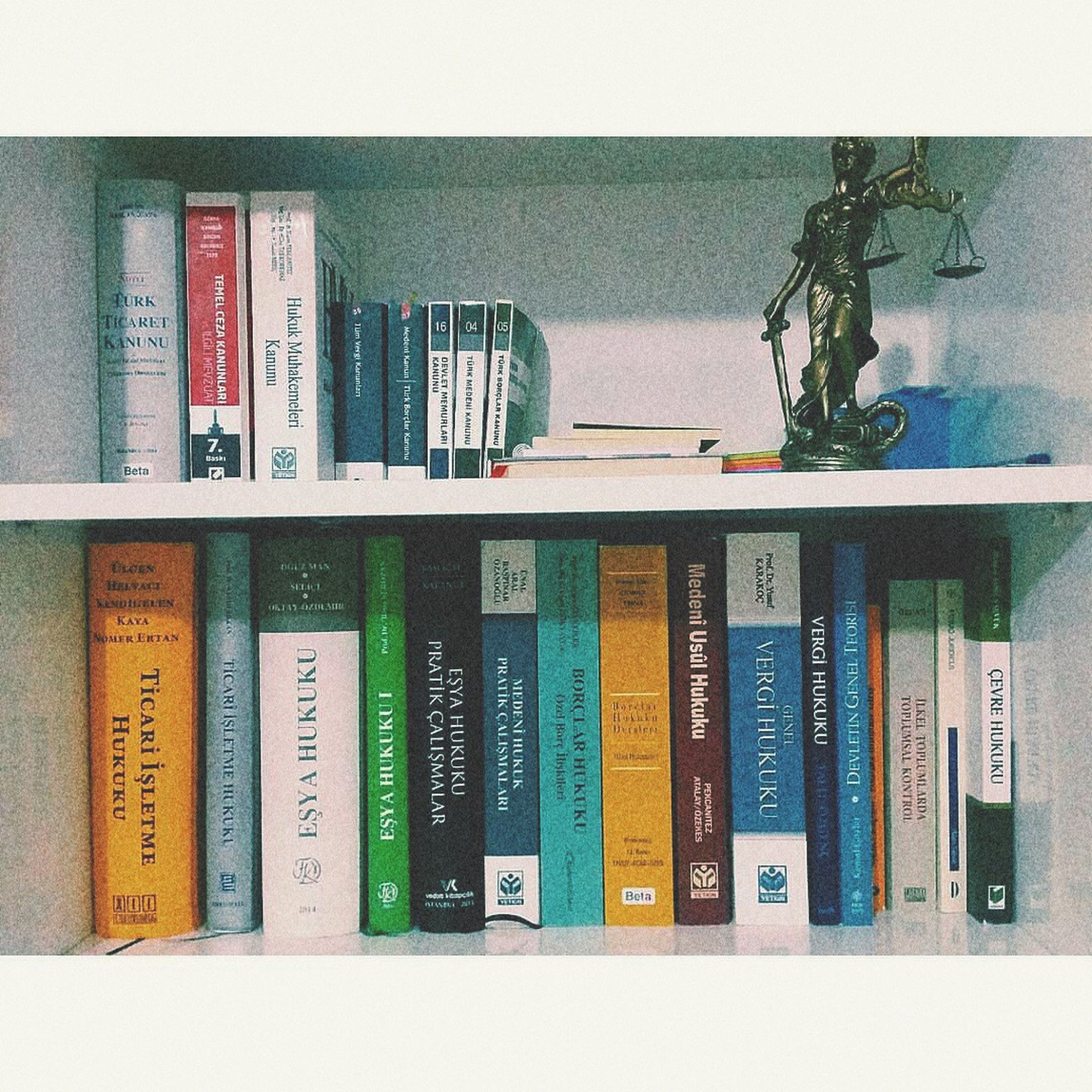 indoors, book, shelf, human representation, still life, choice, green color, collection, arrangement, creativity, large group of objects