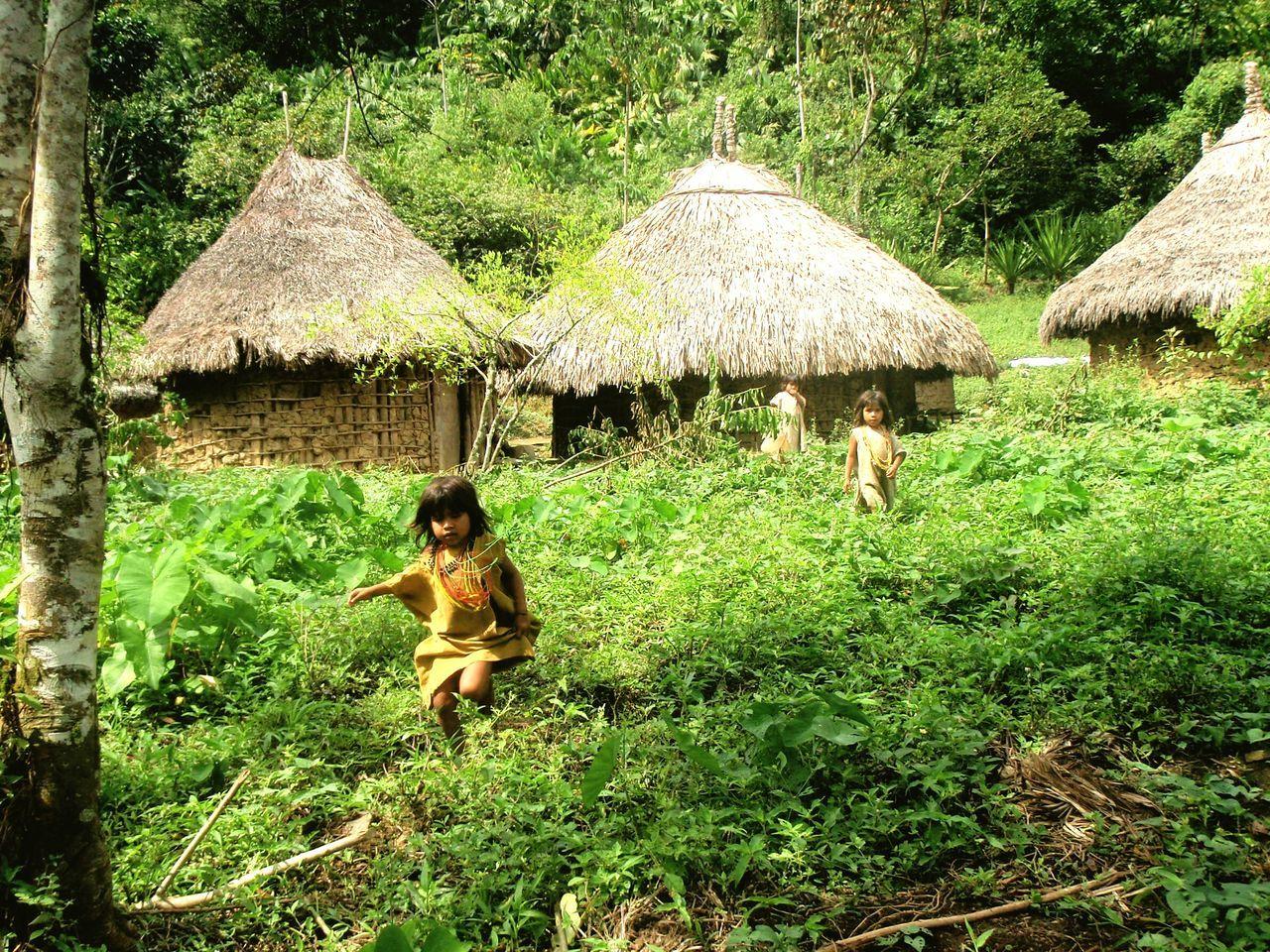 Untold Stories Colombia Indigenouspeople Indigenouscommunity
