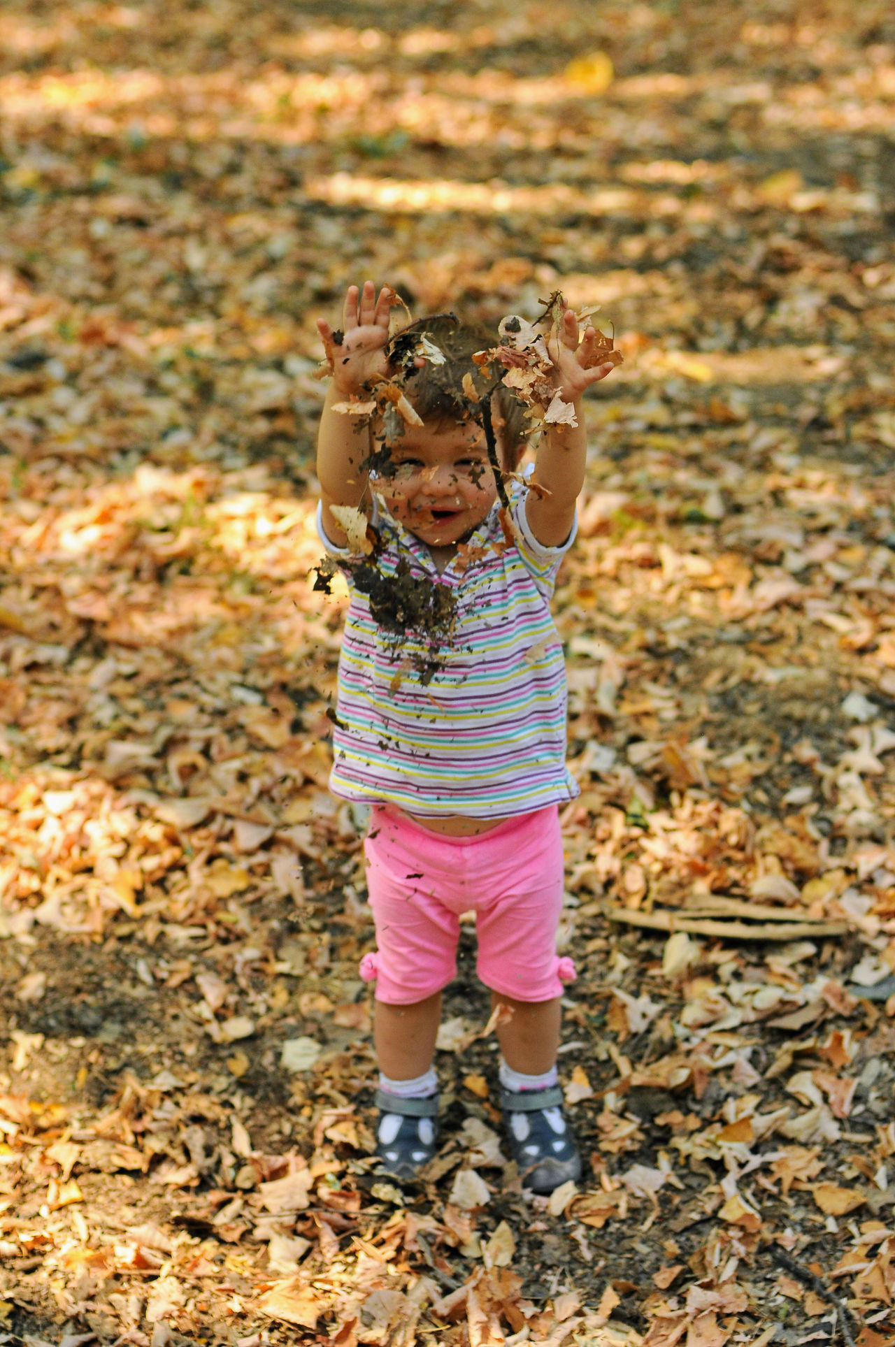 A baby girl is playing with leafs in the nature. Autumn Cheerful Childhood Childhood Memories Children Only Dust Elementary Age Enjoying The Nature Enjoyments Girls Golden Leafs Growing Up Hands Up Hands Up In The Air Joyful Moments Leaf Nature Playing With Nature Pleasure Pleasure Of Life Pleasure Time Throwing Leafs