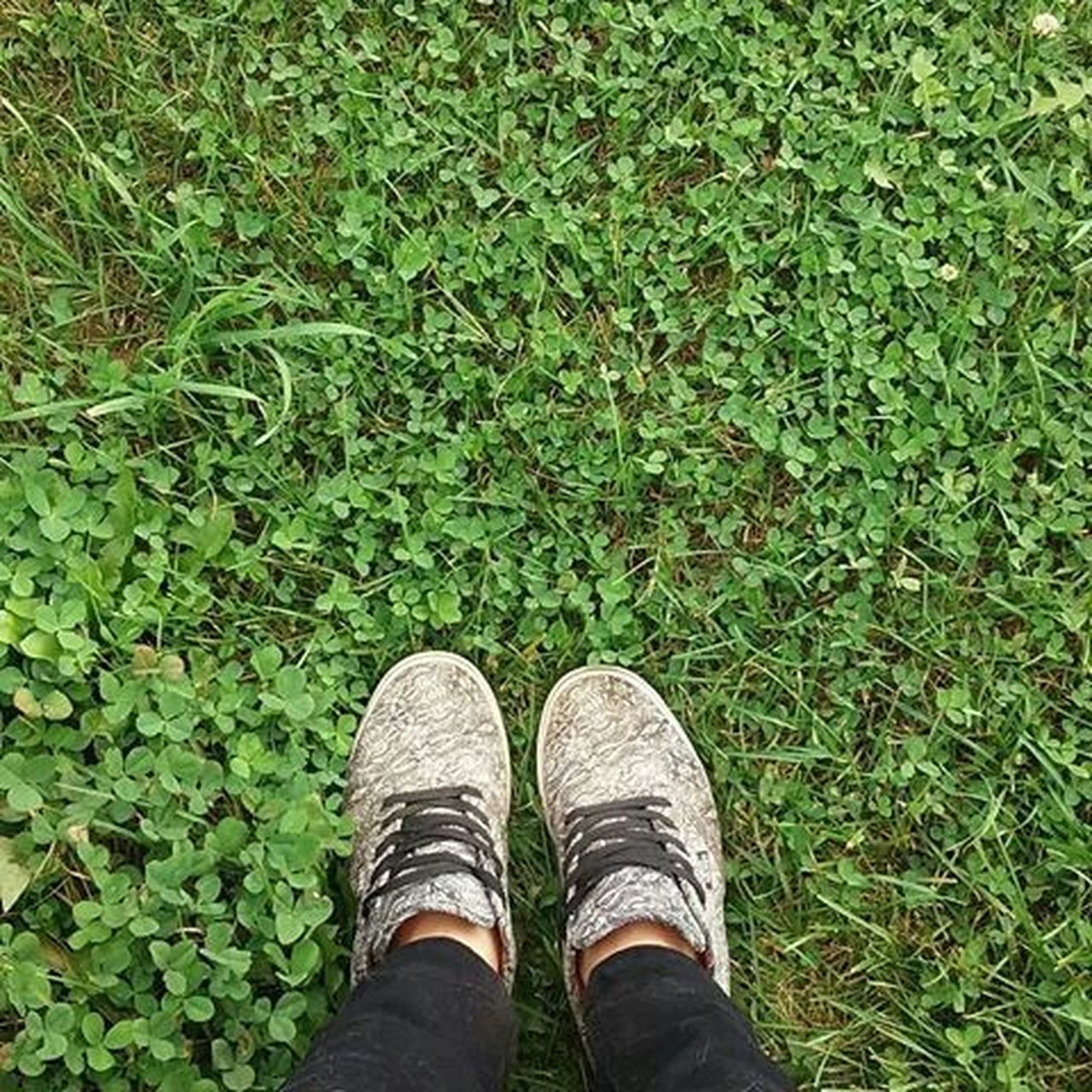 green color, shoe, one person, grass, standing, low section, human leg, day, human body part, real people, men, outdoors, growth, nature, one man only, people, adult