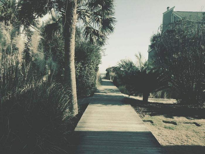 Boardwalk South Carolina Beach