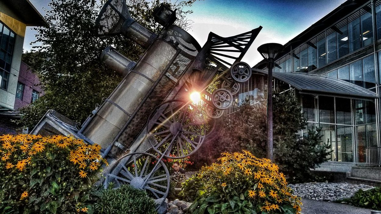Streetphotography Street Art Train Train Station Flowers,Plants & Garden Sunset Golden Moment @ Burnabybc