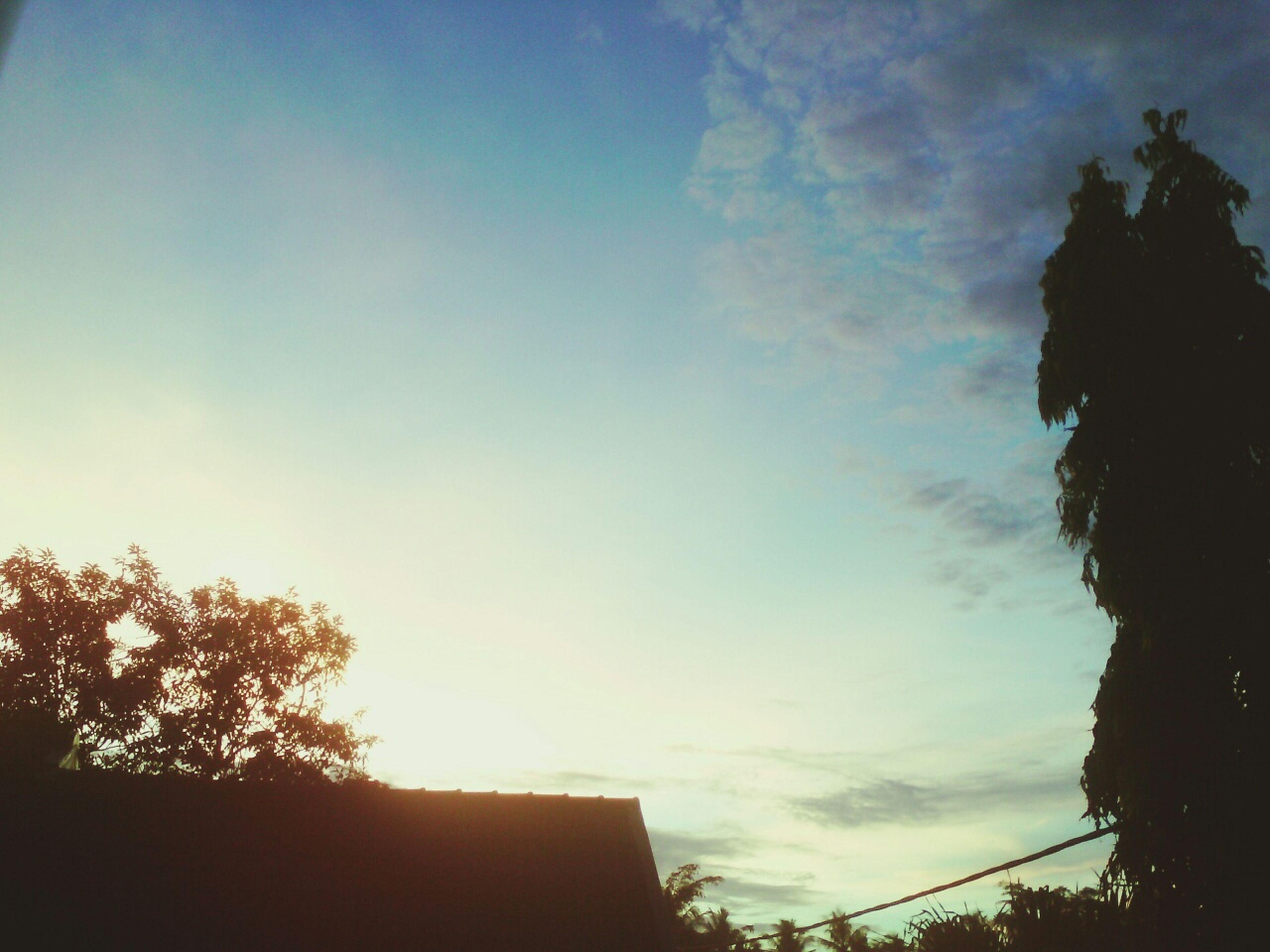 Sunny☀ Hello World I♥Indonesia Sky Taking Photos EyeEm Nature Lover Gotcha!