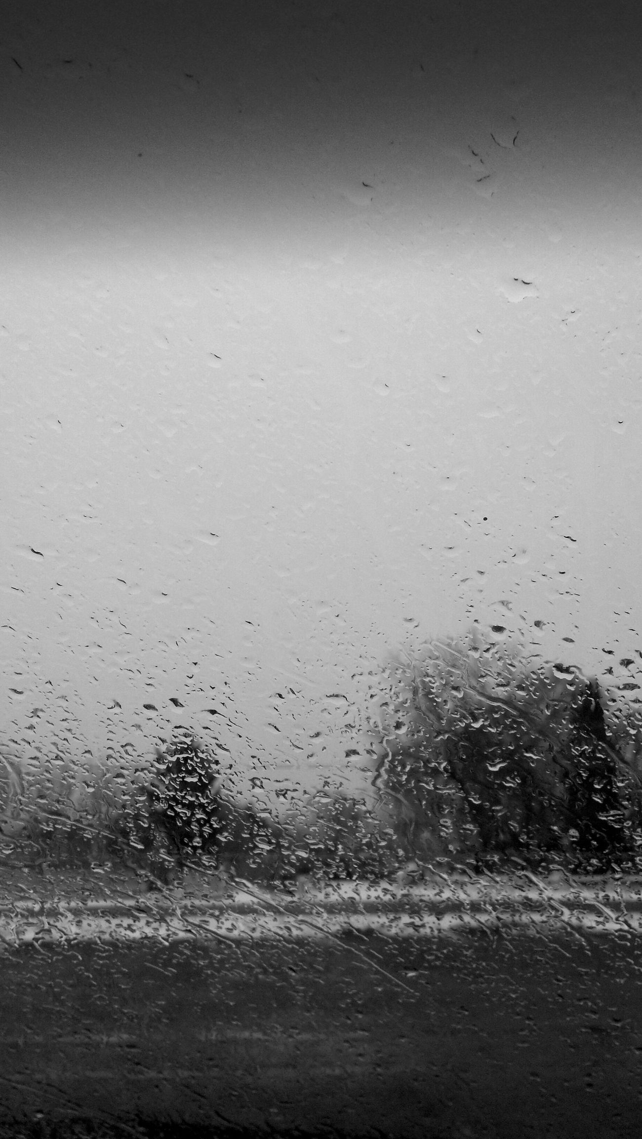 Black and white rainy day.