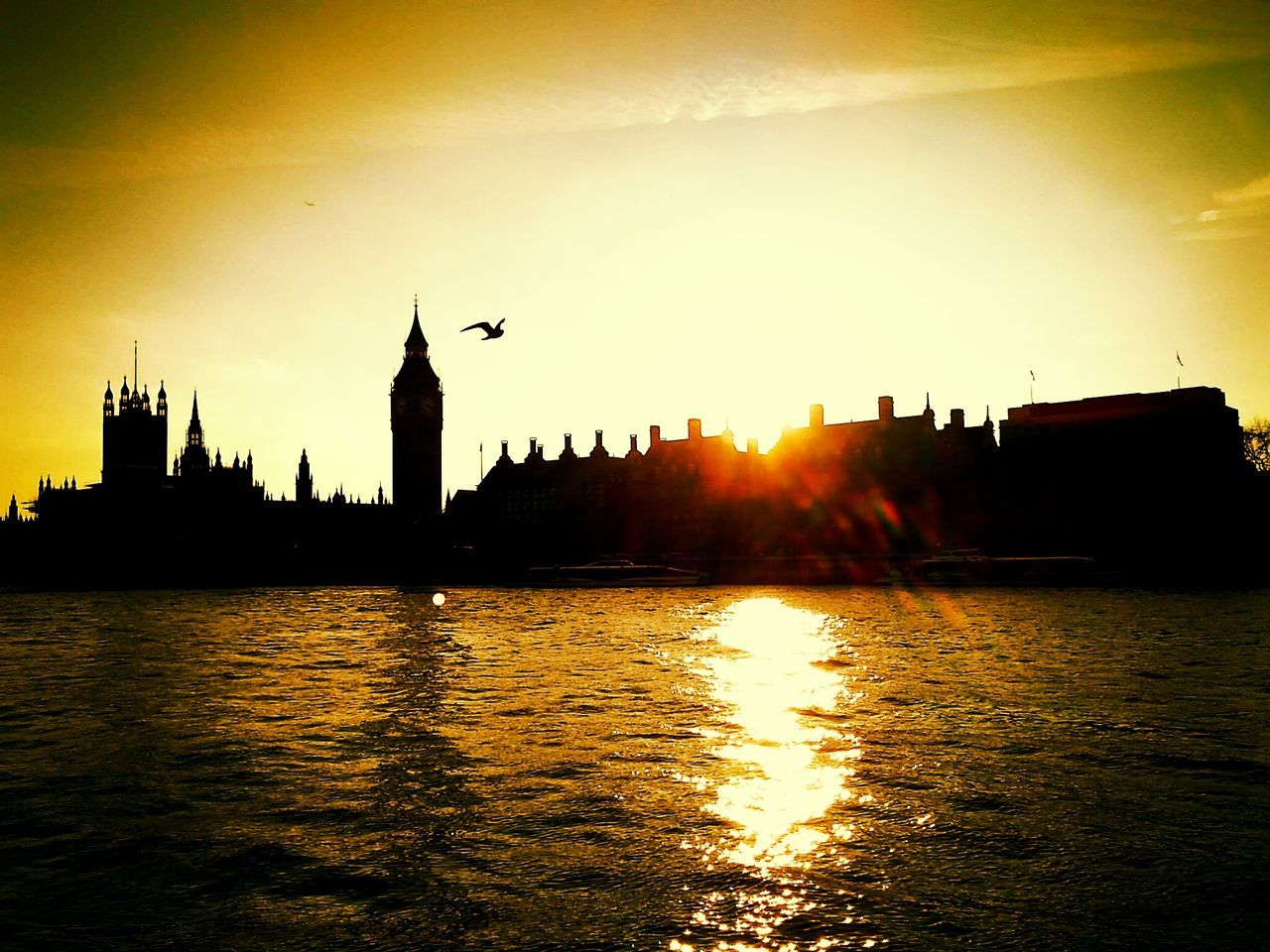 London Big Ben Parliament Building Thames Thames River Sunset Silhouettes Architecture Silhouette Building Exterior Outdoors River Water Built Structure No People Sunset Day Cityscape City Sky Bird Nature Politics And Government