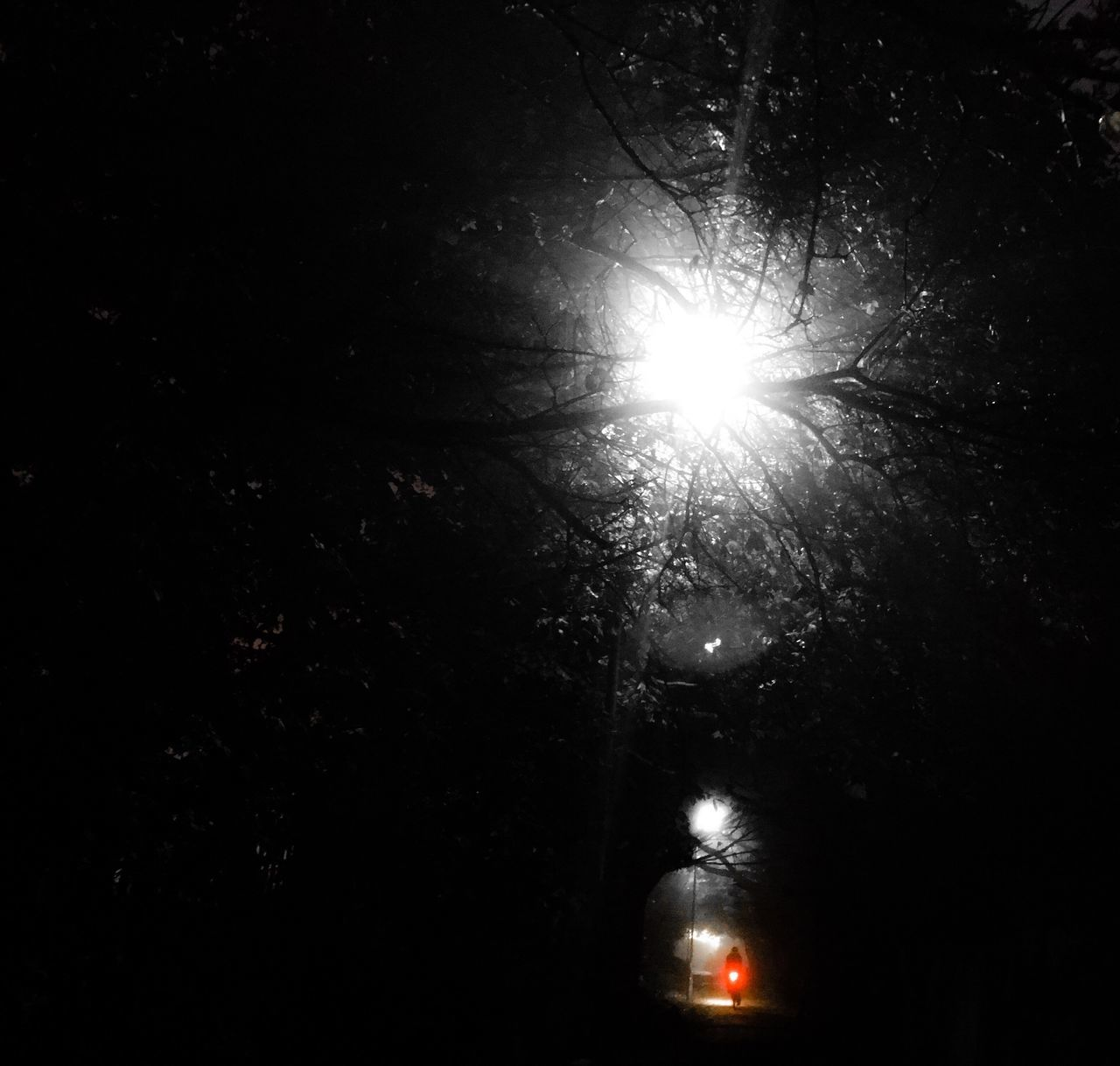 People And Places Red Light Alone In The Darkness Night Light Shine First Eyeem Photo