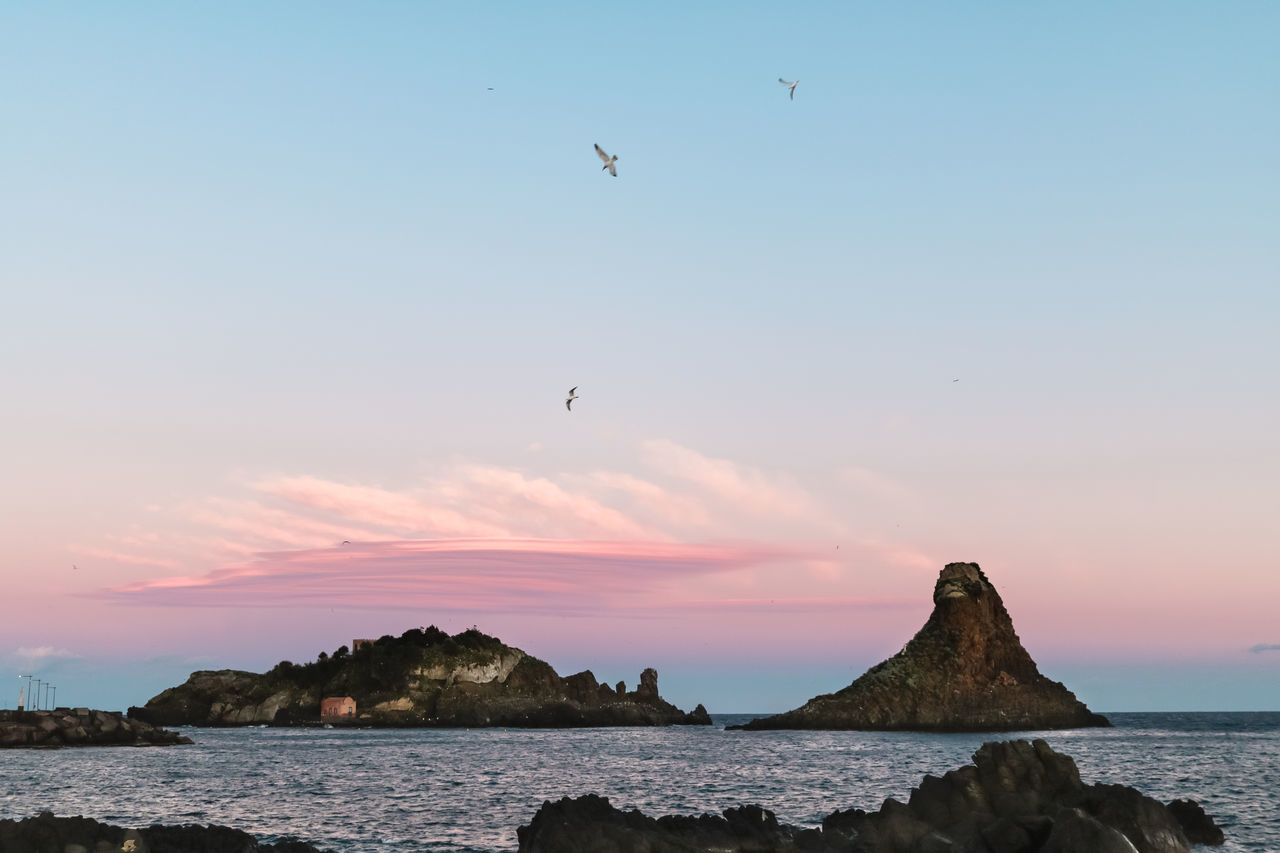 sunset, sea, nature, bird, sky, beauty in nature, scenics, flying, animals in the wild, tranquil scene, outdoors, animal themes, tranquility, no people, animal wildlife, low angle view, water, clear sky, day, horizon over water, spread wings