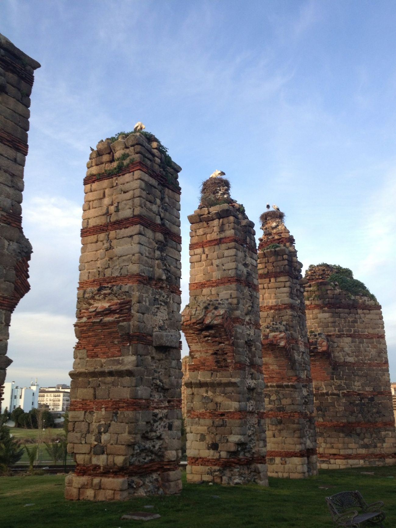 Cigüeñas anidadas en las ruinas romanas ... Qué vistas!!! ;)