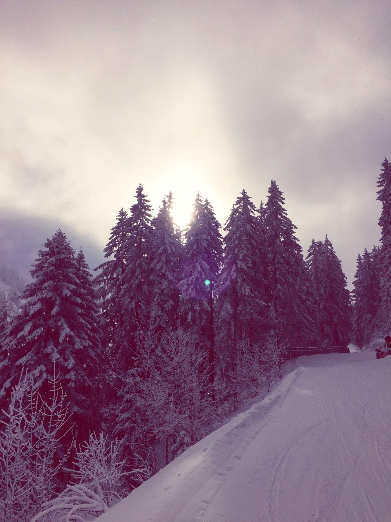 Schwarzsee Skitouring Thankful
