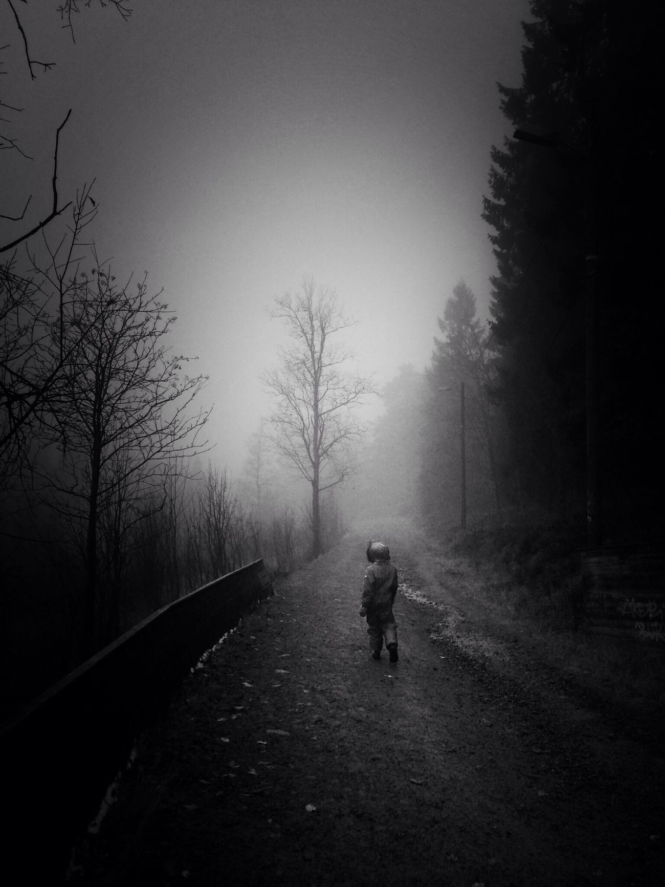 AMPt_community Nature Chasing Fog Black And White