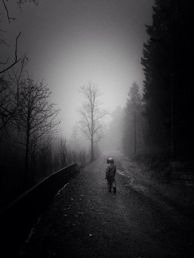 AMPt_community Nature Chasing Fog Black And White