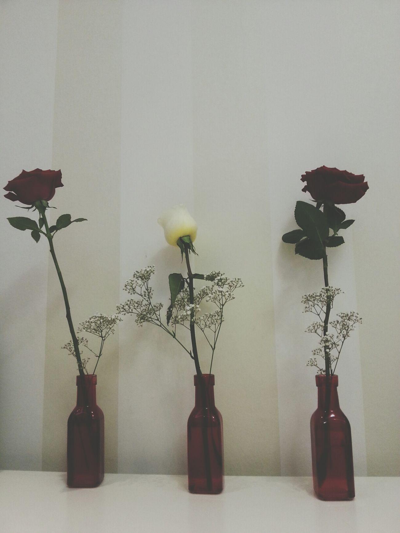 Random Flowers Rose♥ You Make Me Smile .