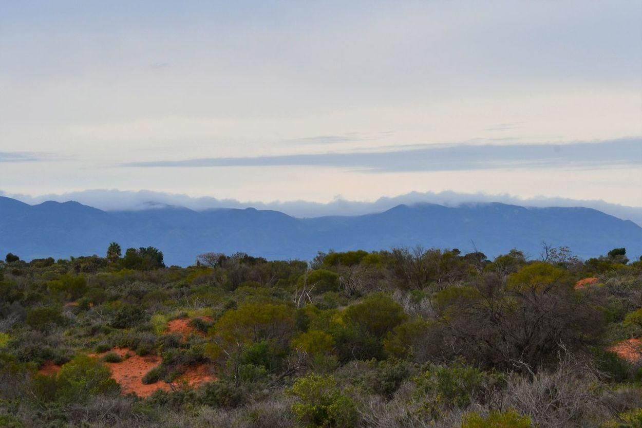 Beauty In Nature Cloud - Sky Day Flinders Ranges Landscape Lush - Description Mountain Range Nature No People Outdoors Ranges Scenics Sky