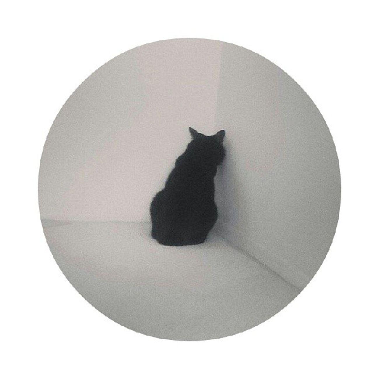 ขอ งีบ ซัก แปป ปวด หมอง CR > Hiromi Pinterest