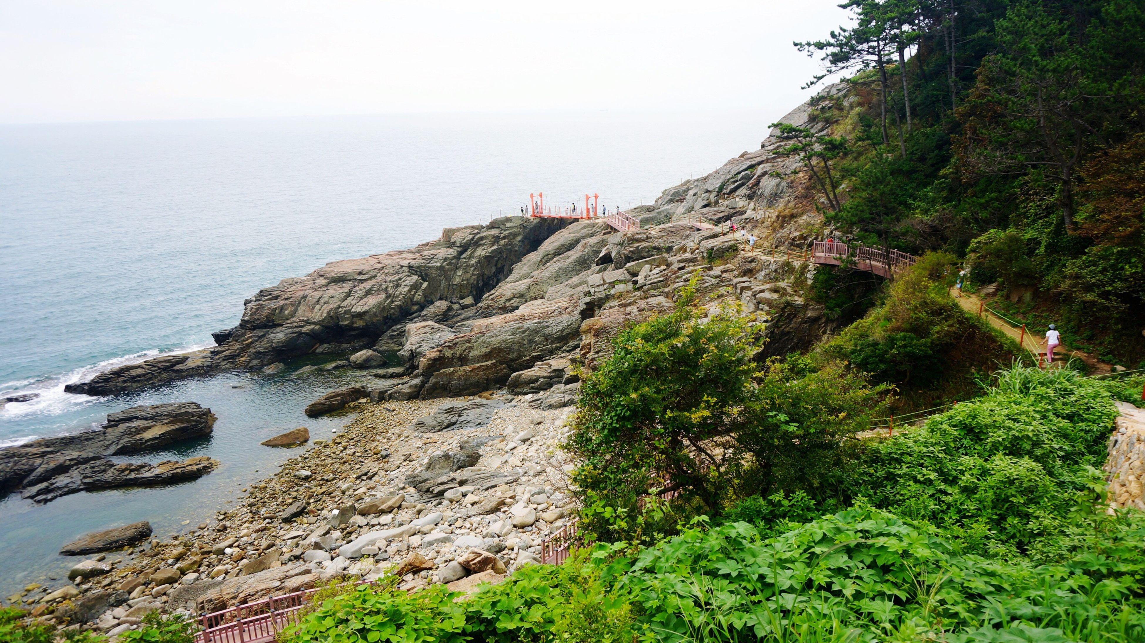 Macro Beauty Korean South Sea
