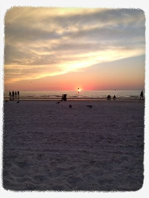 sunset at Clearwater Beach by Caladesign