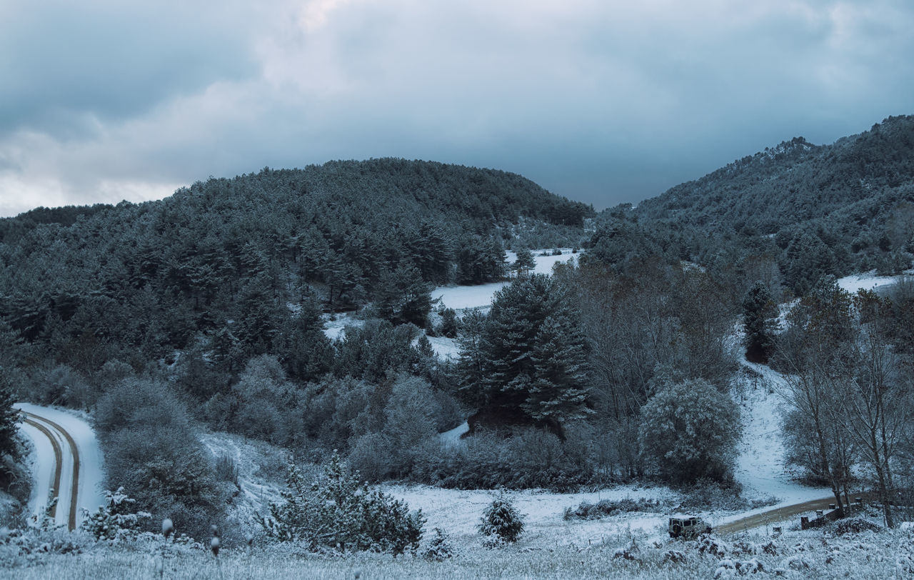 Winter in Bolu Beauty In Nature Cold Temperature Day Dirt Road Forest Hills And Valleys Hillside Icy Landscape Nature No People Outdoors Paths Pathway Sky Sky And Clouds Snow Snowy Mountains Tree Trees And Sky Winding Path Winding Road Winter Winter Trees Wintertime
