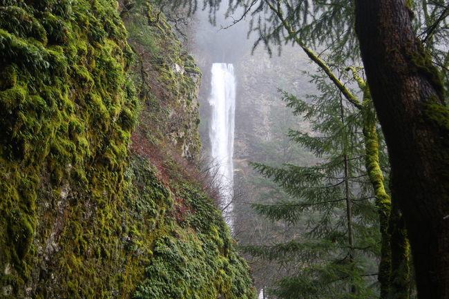 Hiking Nature Photography Naturelovers