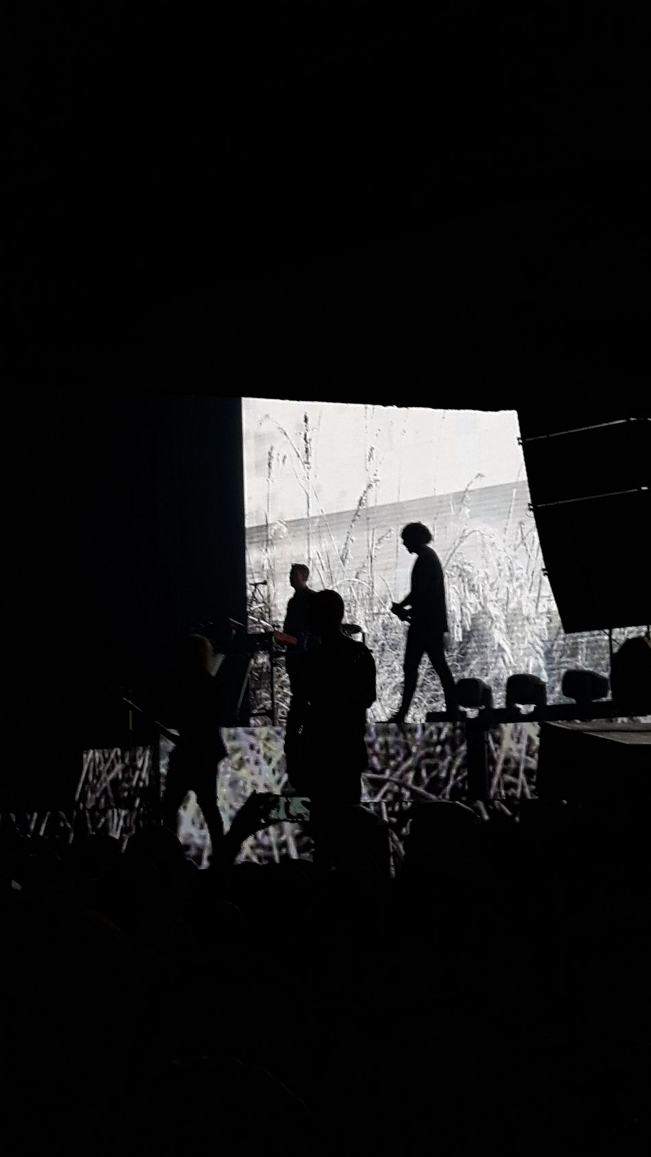 Silhouette Indoors  People Only Men Concertphotography Columbiahalle Berlin Favorite Band Adult Day Inlove