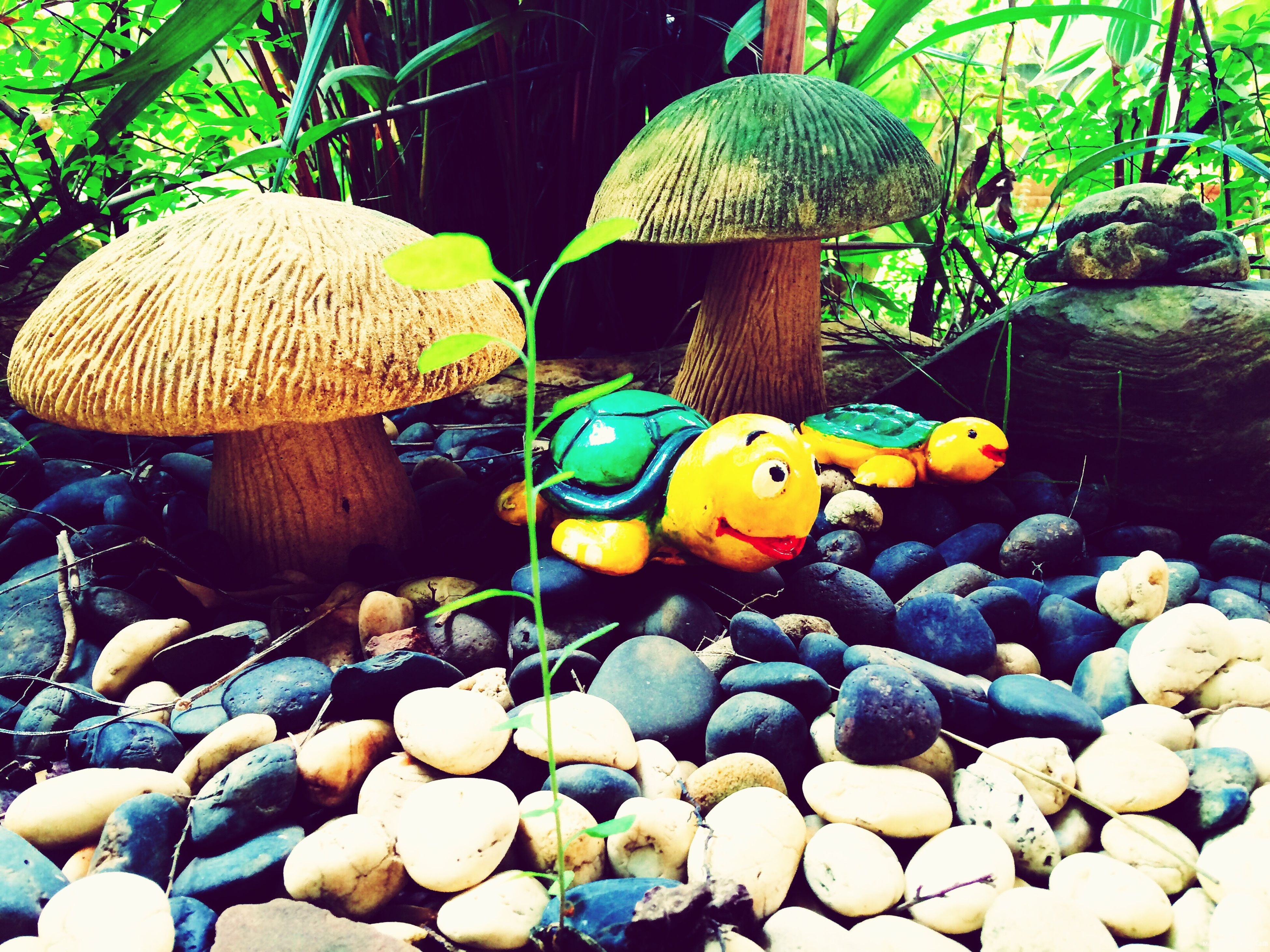 water, tree, nature, animal themes, outdoors, beauty in nature, day, rock - object, no people, stone - object, animal representation, tranquility, duck, sunlight, yellow, animals in the wild, green color, toy, multi colored, park - man made space