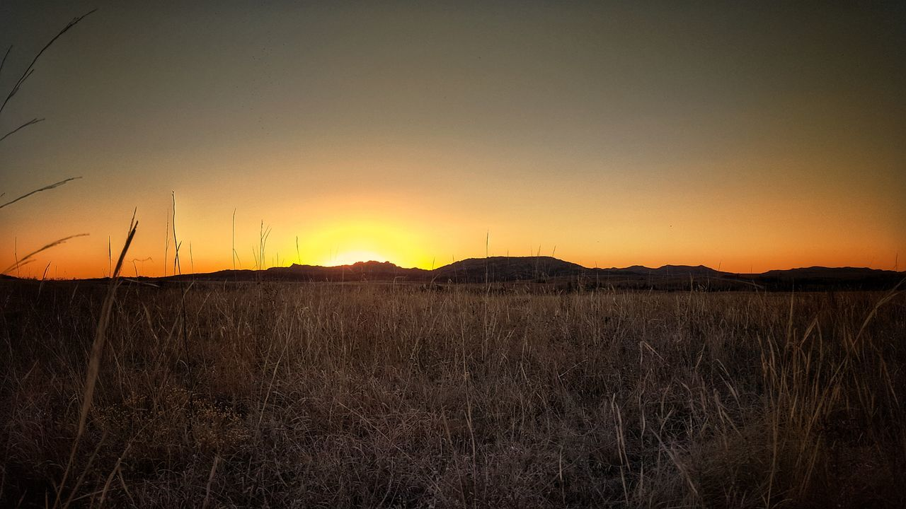 tranquil scene, sunset, nature, tranquility, beauty in nature, landscape, scenics, field, outdoors, no people, silhouette, rural scene, sky, grass, growth, day