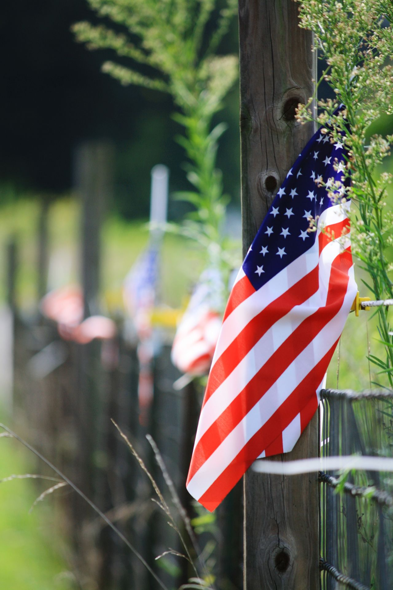 Patriotism Flag Cultures Striped Independence Holiday - Event Stars And Stripes Close-up Outdoors Summer Togetherness
