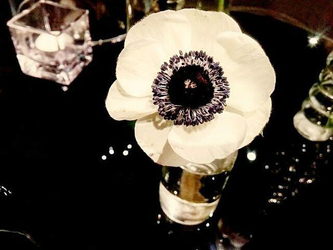 여의도 글래드호텔 세인트웍스 아네모네 웨딩 Gladhotel Saintworks Annemone Wedding