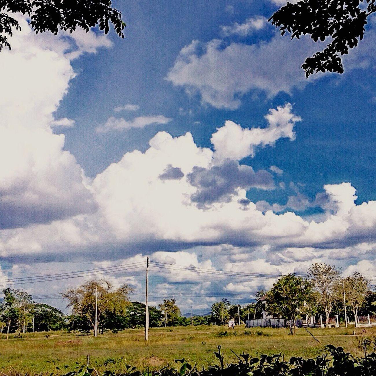 เมฆจ๋า