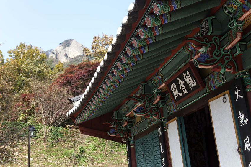 autumn of Gaeamsa, a Buddhism temple located in Byensan, Jeonbuk, South Korea Architecture Autumn Buddhism Building Exterior Built Structure Day Fall Gaeamsa Low Angle View Nature No People Outdoors Place Of Worship Religion Roof Sky Spirituality Temple Traditional Building Tree
