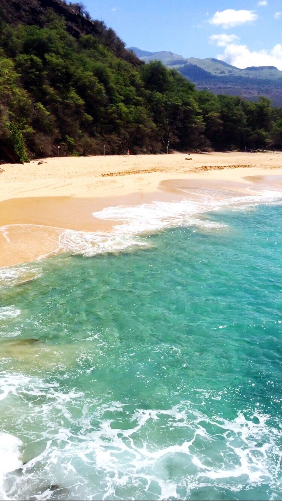 The most magical beach out there✨🐚 Clarity Clear Glass Magical Bigbeach Aqua Dreamy Maui