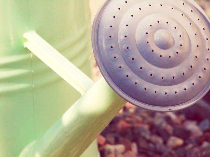 Wateringcan Closeup