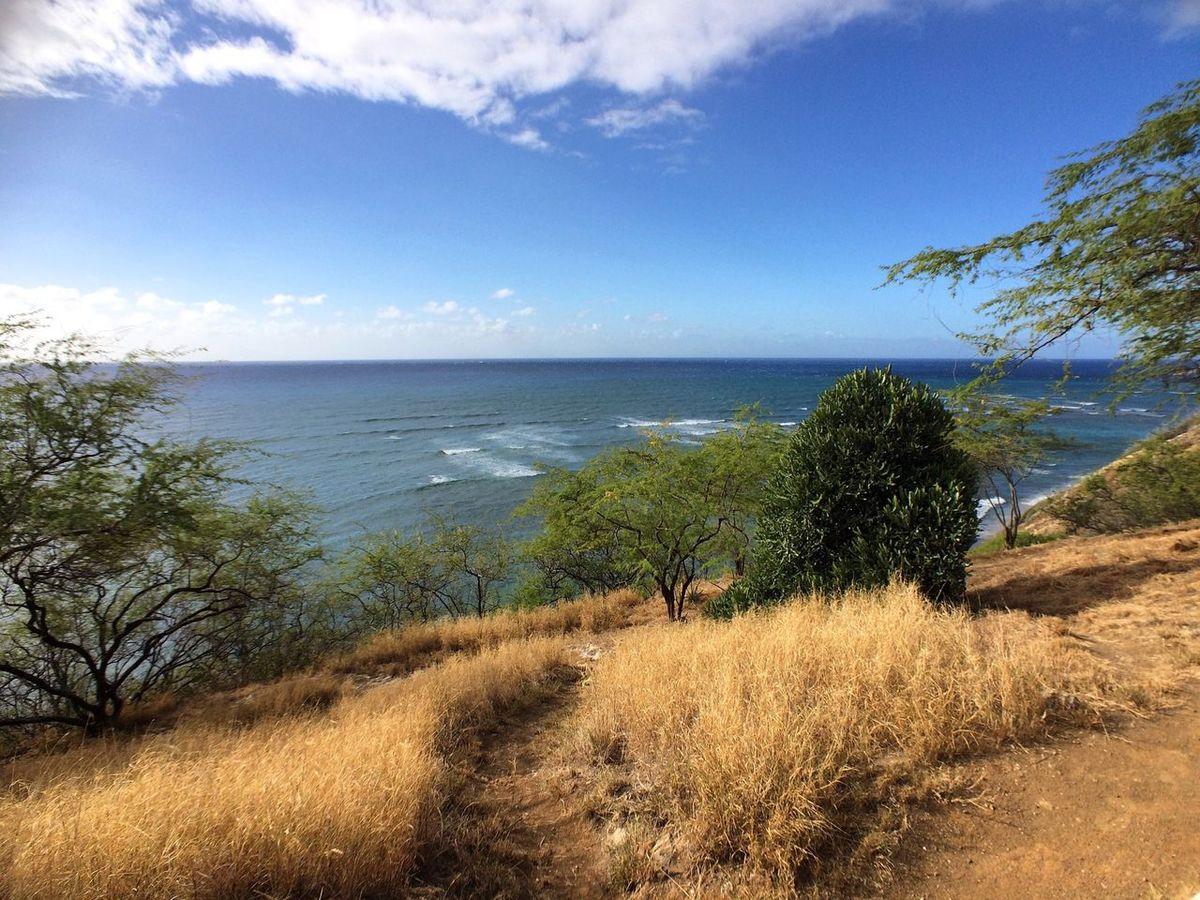 Daimondhead lookout Oahu Hawaii