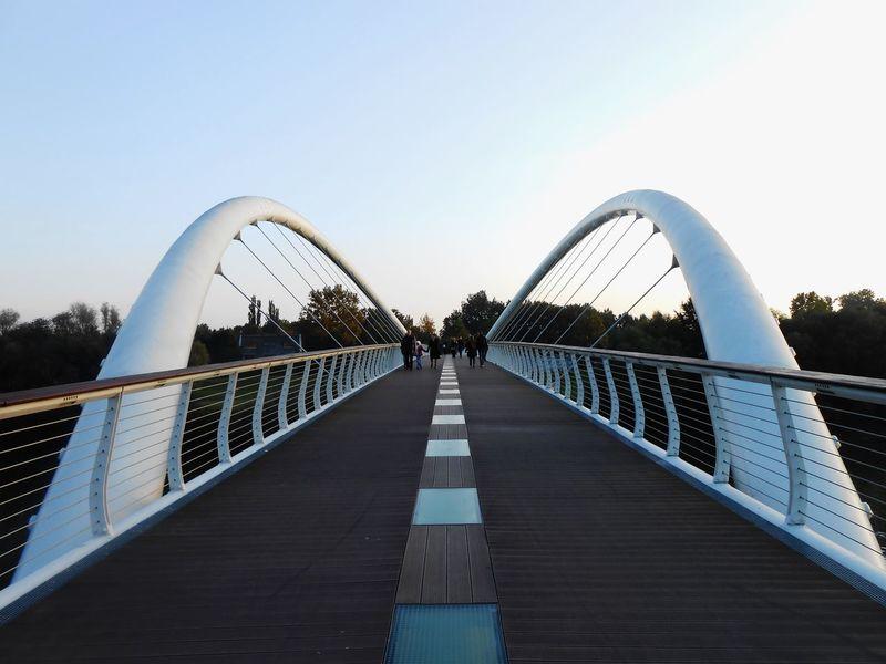 Bridge Tisza River Hungary Szolnok City Day ősz Nature Road EyeEmNewHere