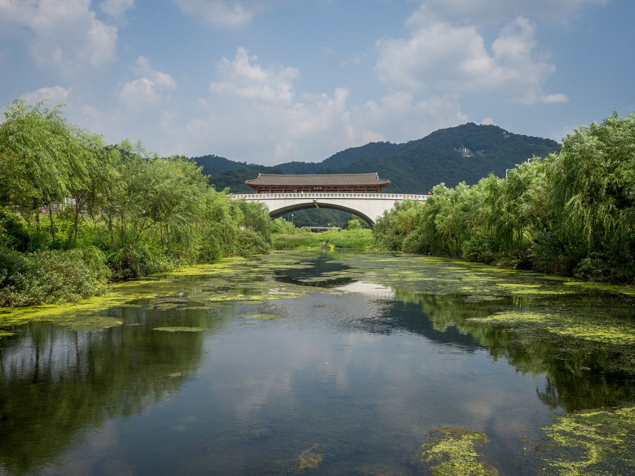 Architecture Bridge Bridge - Man Made Structure Bridge Arch Bridge Over Water Clear Day Korea Korean Bridge Nature Outdoors Reflection River River And Bridge River And Trees Sky Traditional Architecture Travel Destinations Water
