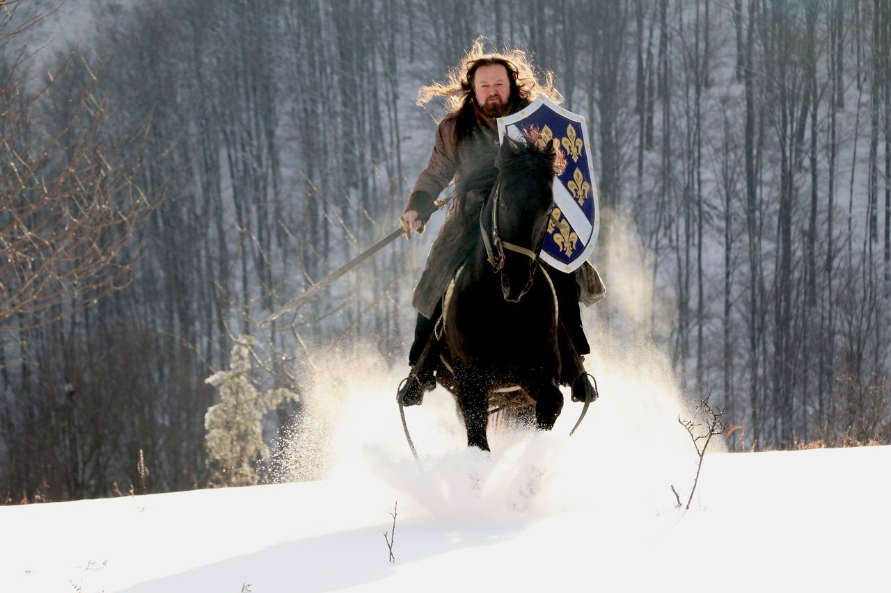 Adult Bosnian  Bosniankingdom Cold Temperature Day Full Length Horses KINGDOM Nature One Man Only One Person Outdoors Snow Srebrenica Standing Winter