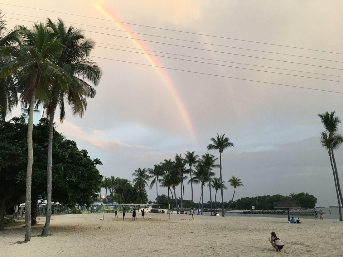 Breathing Space Singapore Megazip Adventure IPhone 6s Plus Double Rainbow Beach Siloso Beach