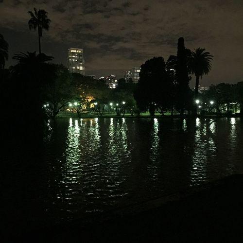 Soledad es la oportunidad de observar? Illuminated Reflection City Life