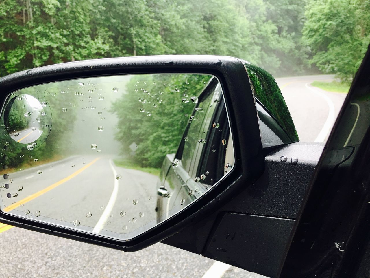 Car Transportation Side-view Mirror Mode Of Transport Drop Wet Land Vehicle Window Rain Weather Driving Vehicle Mirror RainDrop Road Tree Vehicle Part Water Day Travel No People Outdoors Appalachian Mountains Blood Mountain Foggy Fog
