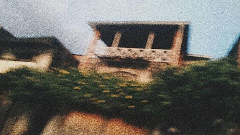 Vscocambr Vscocam VSCO Vscoday Vscodaily Vscocambrasil Vscocambrazil VscoBr Vscobrazil Vscobrasil Brasil Vscocamflowers Vscoflowers Flowers