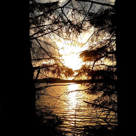 Sunset Nature Outdoors Tree Lake Beauty In Nature Water Norway🇳🇴 Stokkavannet Silhouette Tranquil Scene Reflection Tranquility Sky No People Scenics Day