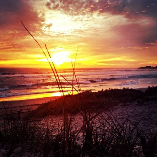 WesternAustralia Geraldton Skyline Sunset Natural Nofilter Beautiful Seeaustralia Seewa Beach Beauty Sea Trees Colour Holiday Amazing