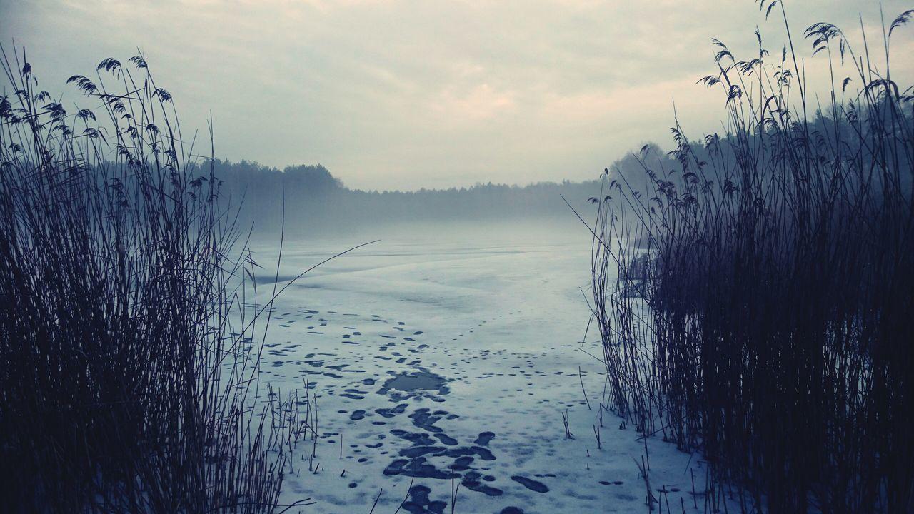 Zalew Sosnie zima Sosnie